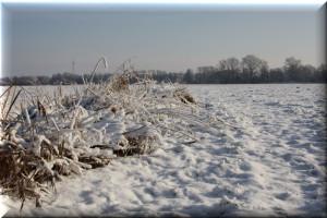 Winter wunderschön