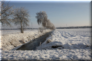 winter weitblick