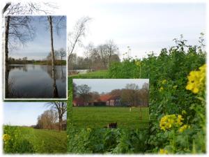 Landschaft WOL 4